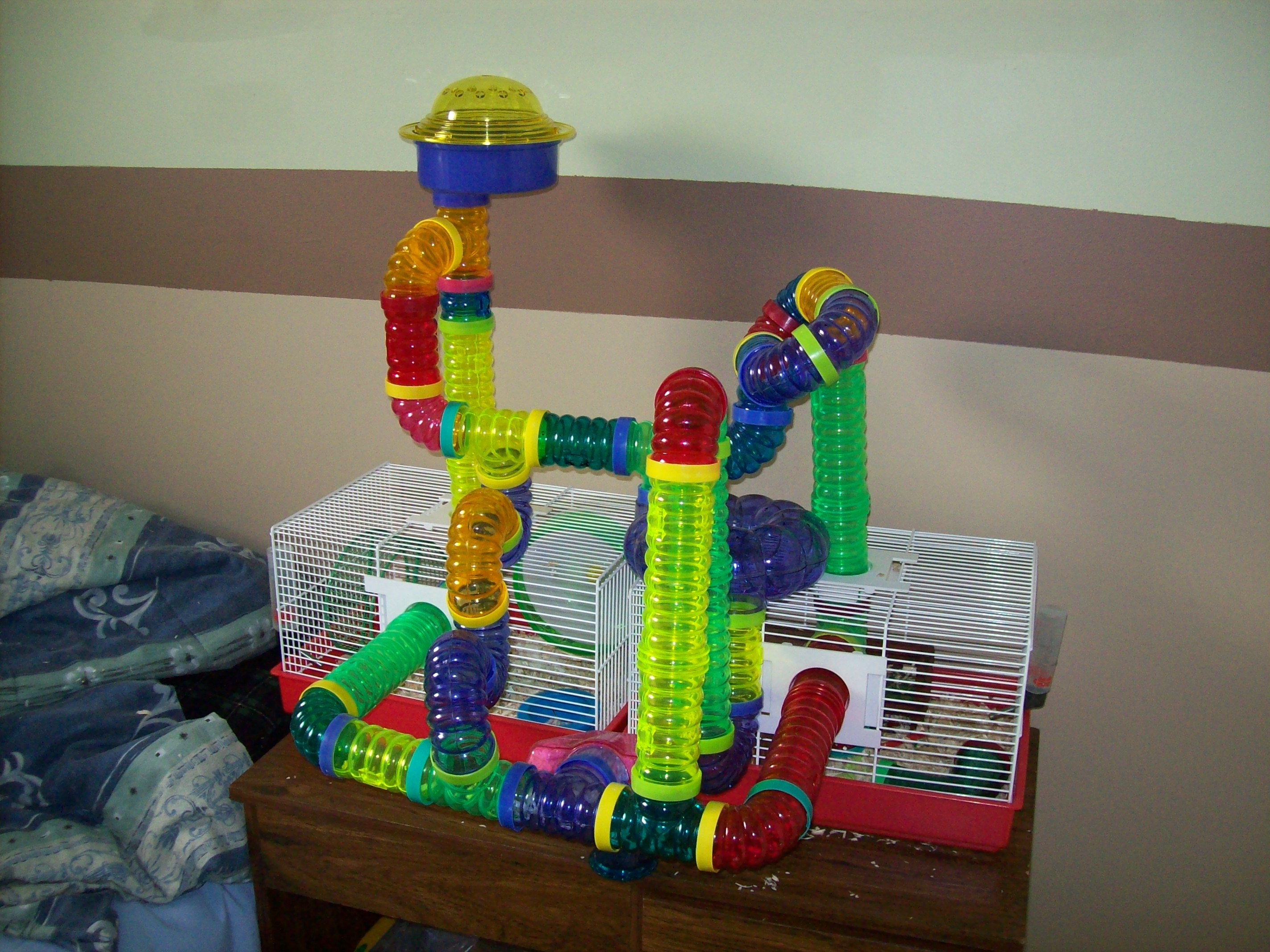 Hamtaro's Current Cage Configuration