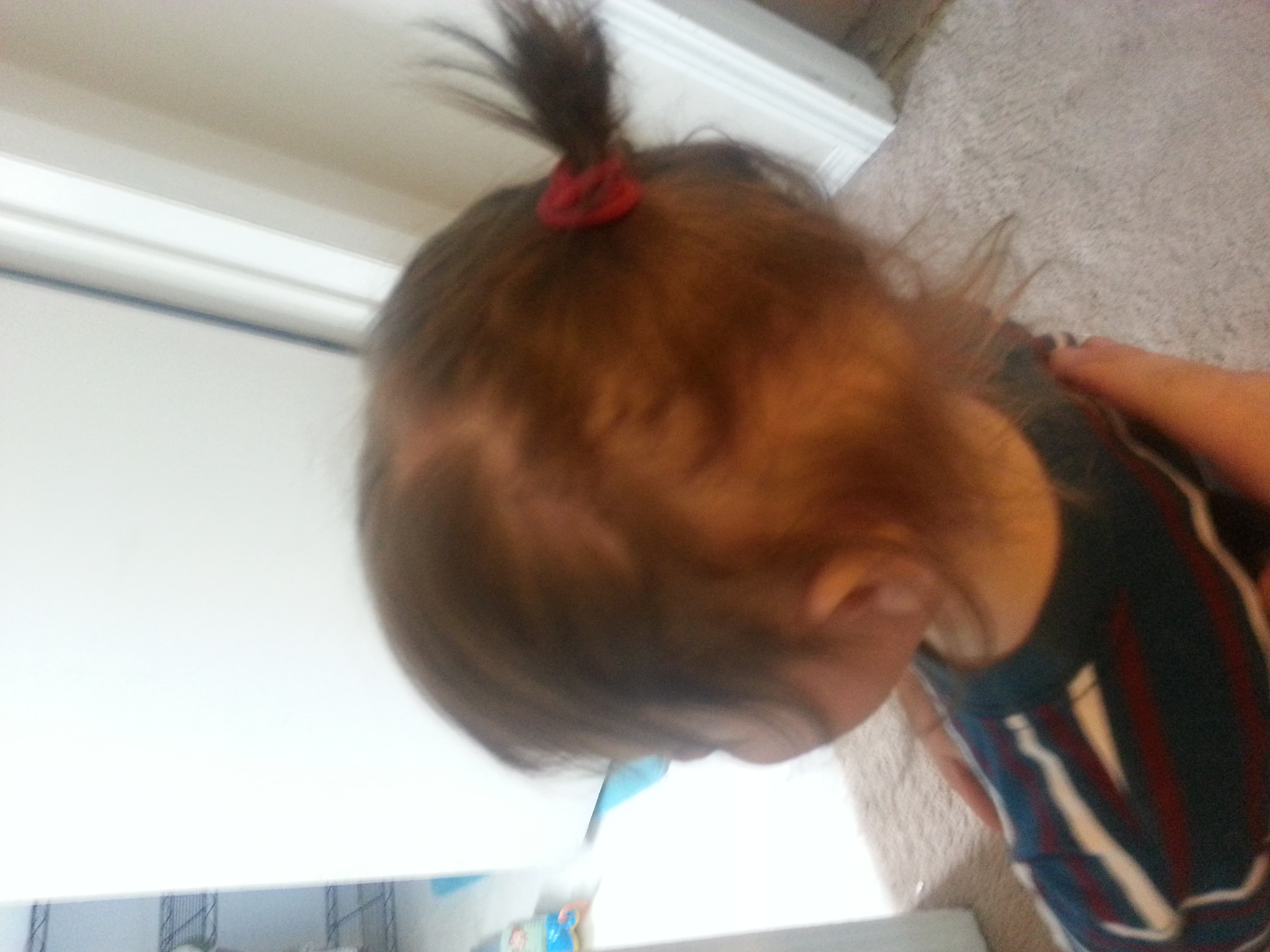 Ryder Hair Tied