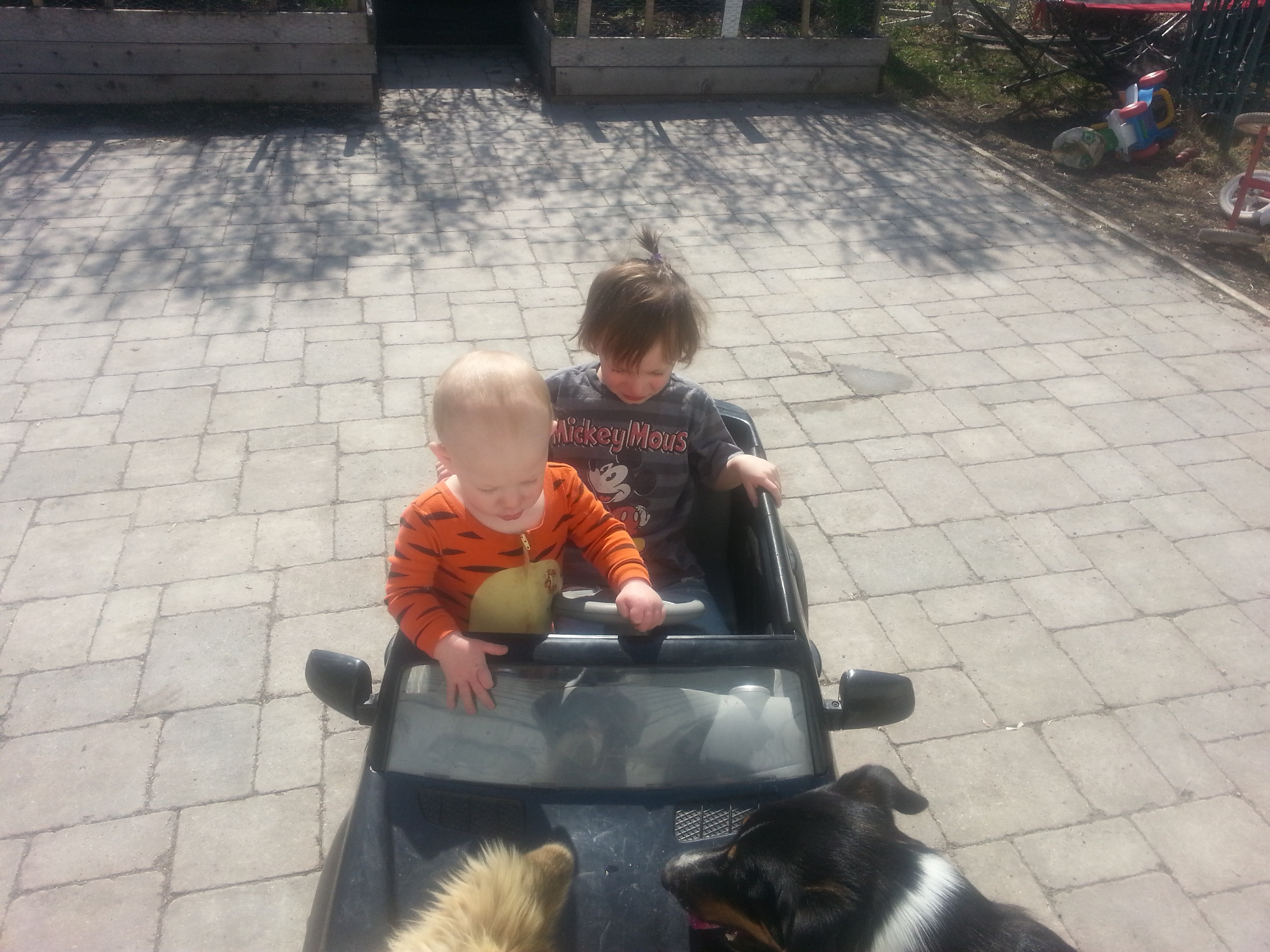 Logan & Ryder In Their Mercedes Benz