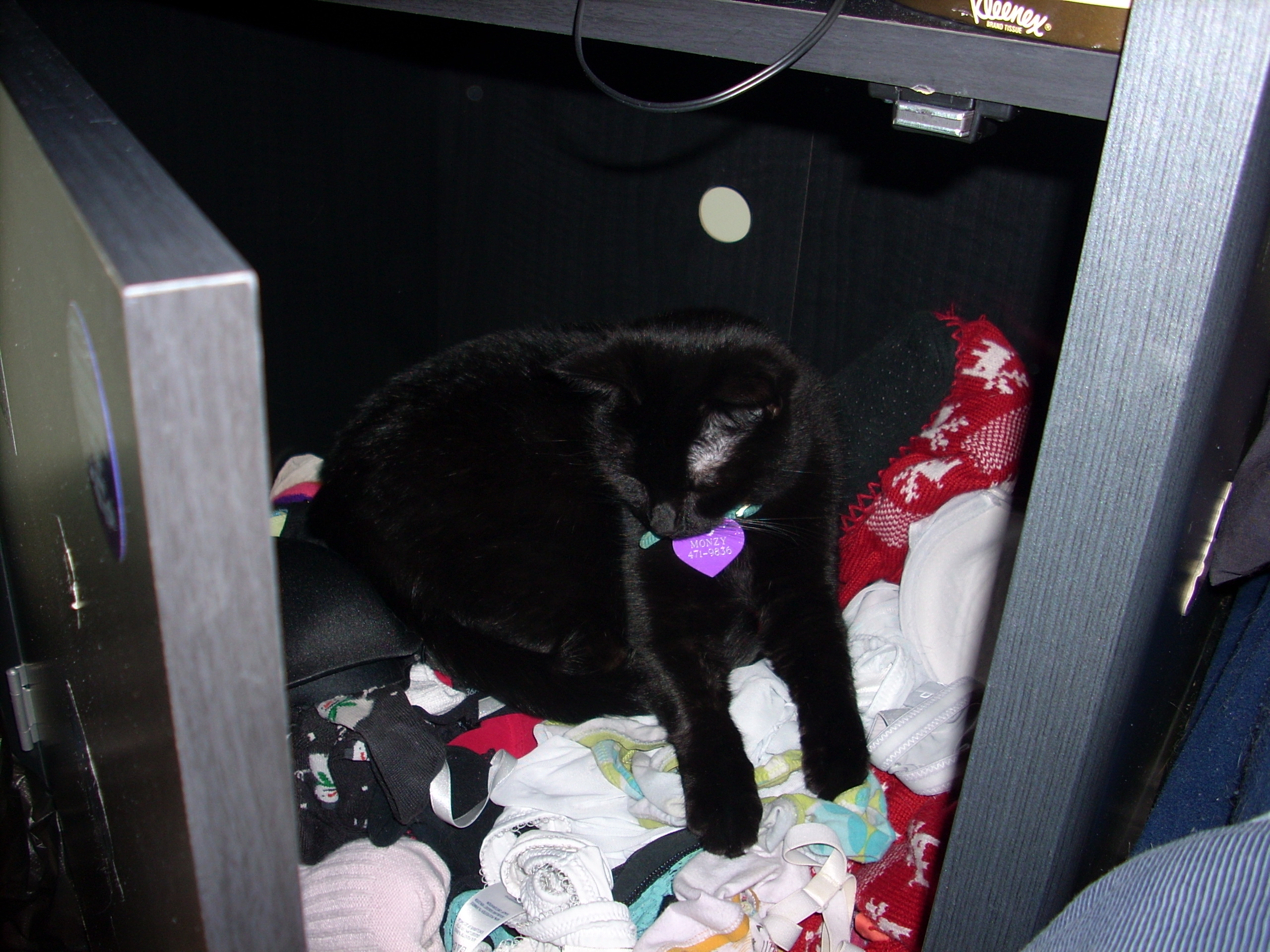 Monzy In Diana's Underwear Drawer 2