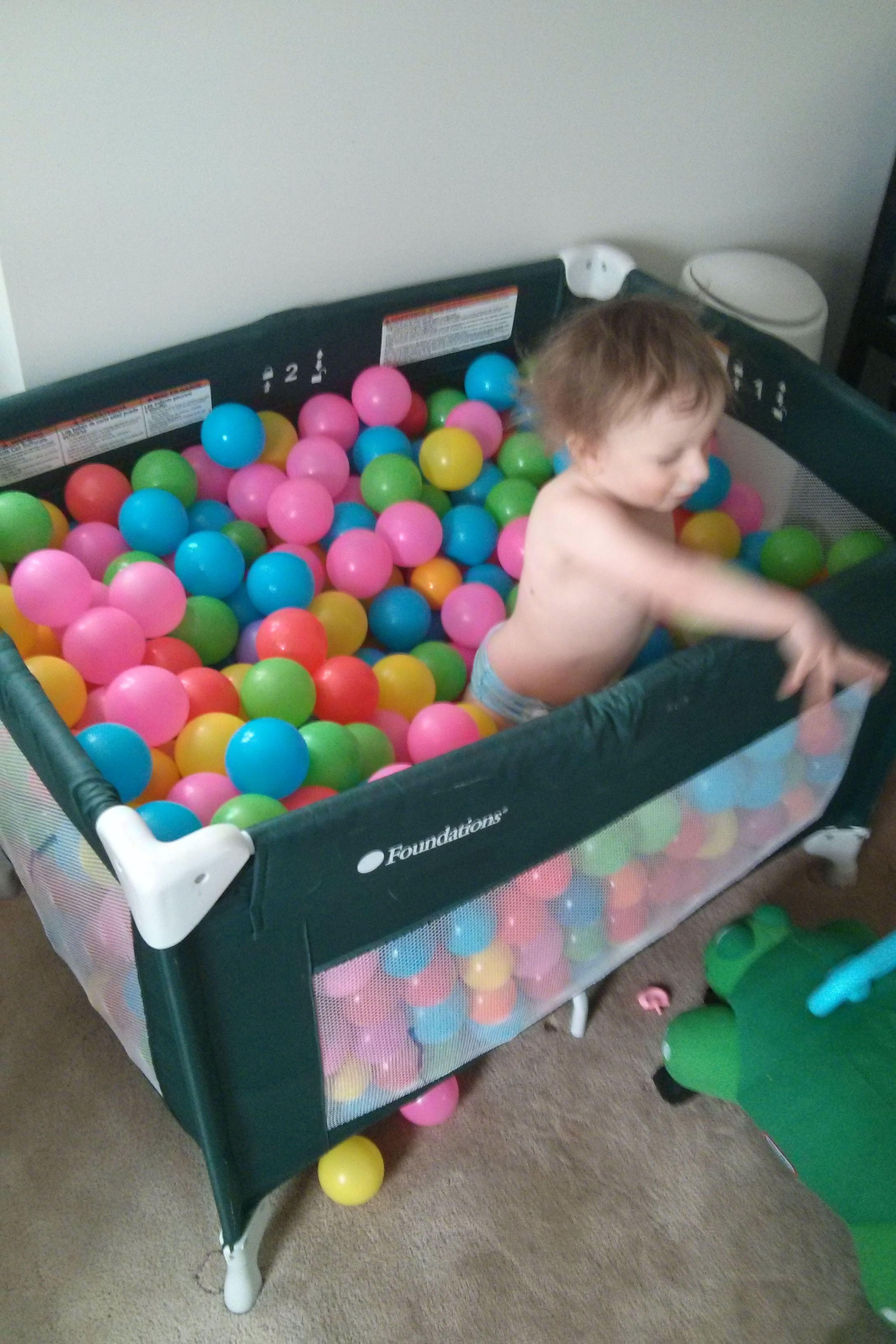 Ryder Playing In Ball Pit