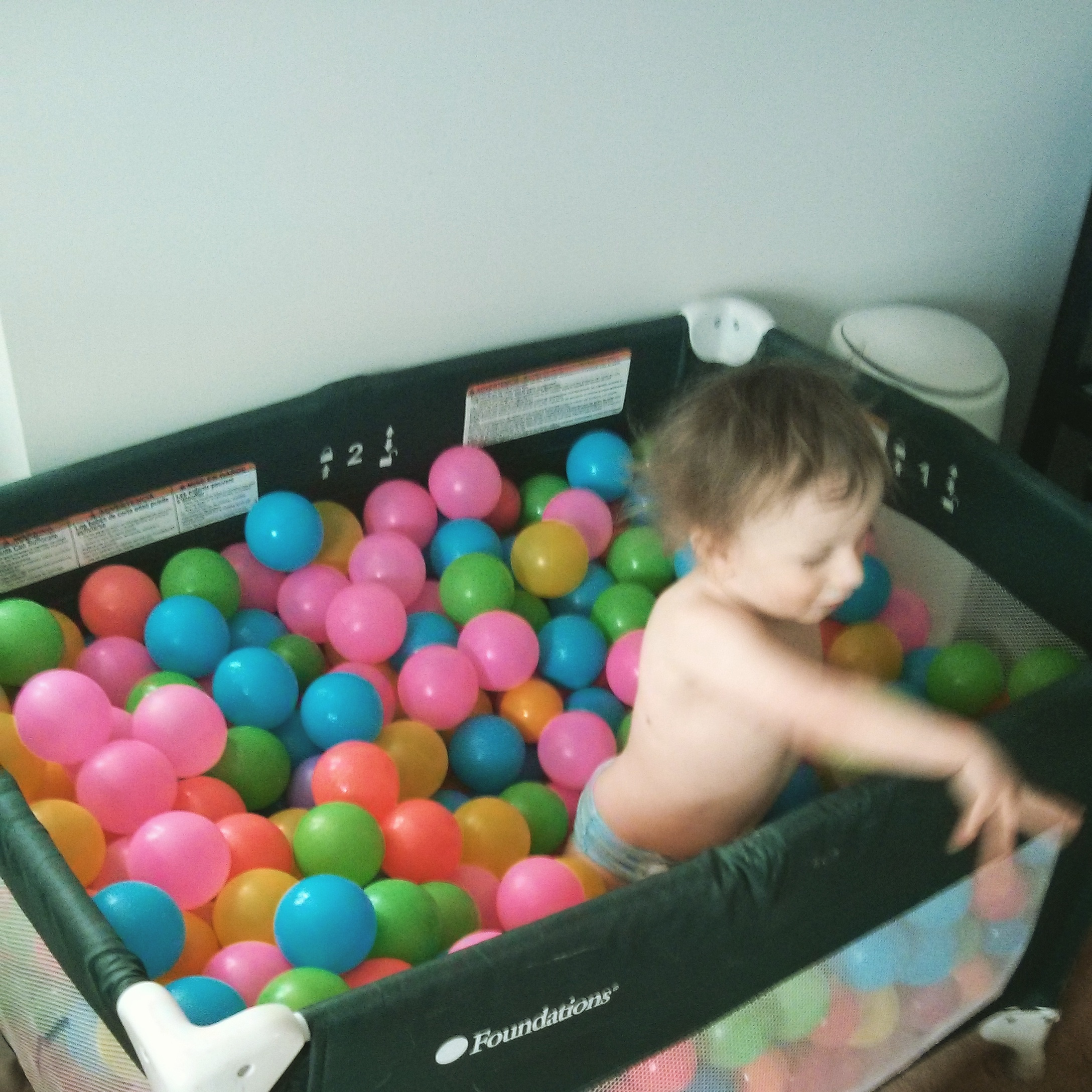 Ryder Playing In Ball Pit Instagramed