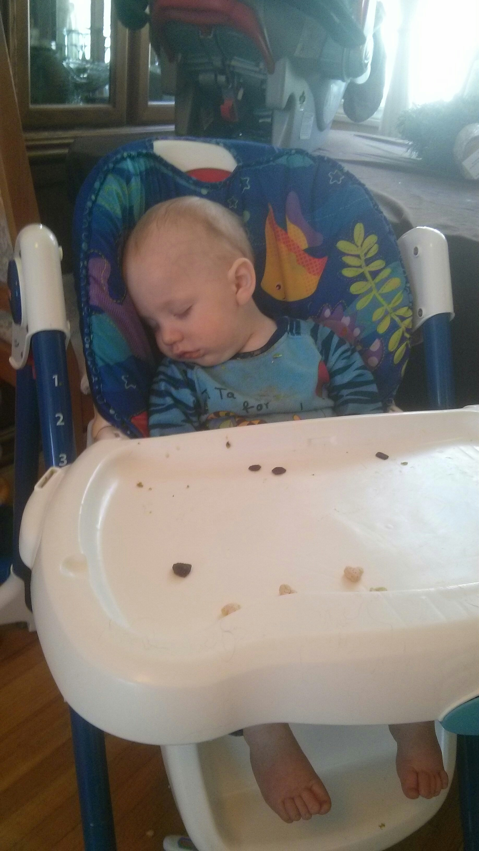 Logan Crashed While Eating 2