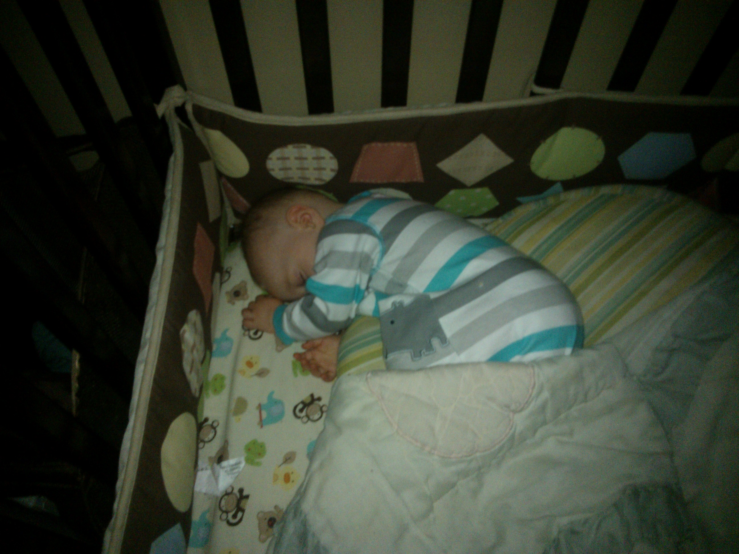 Ryder Sleeping In His Crib