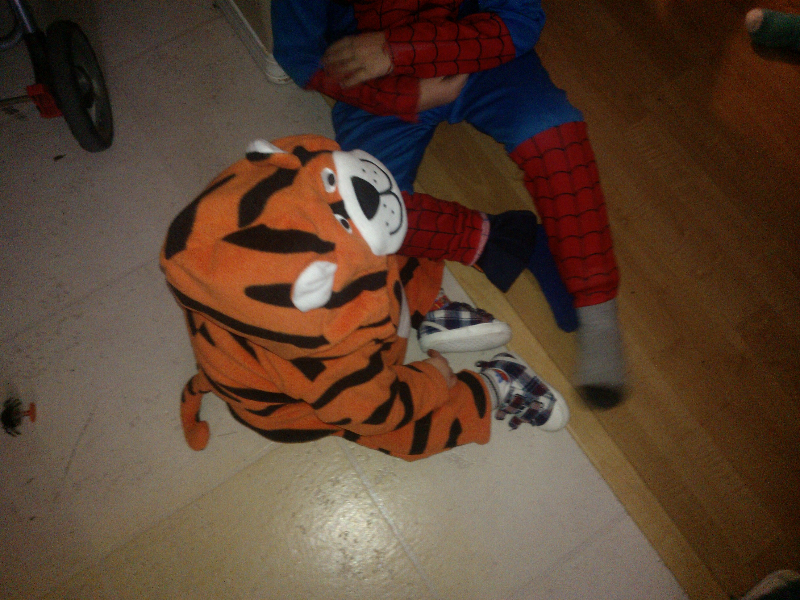 Ryder As A Tiger